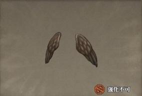 堕天使の翼.jpg