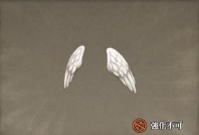 天使の翼.jpg