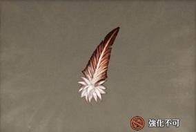 鷲の羽根.jpg